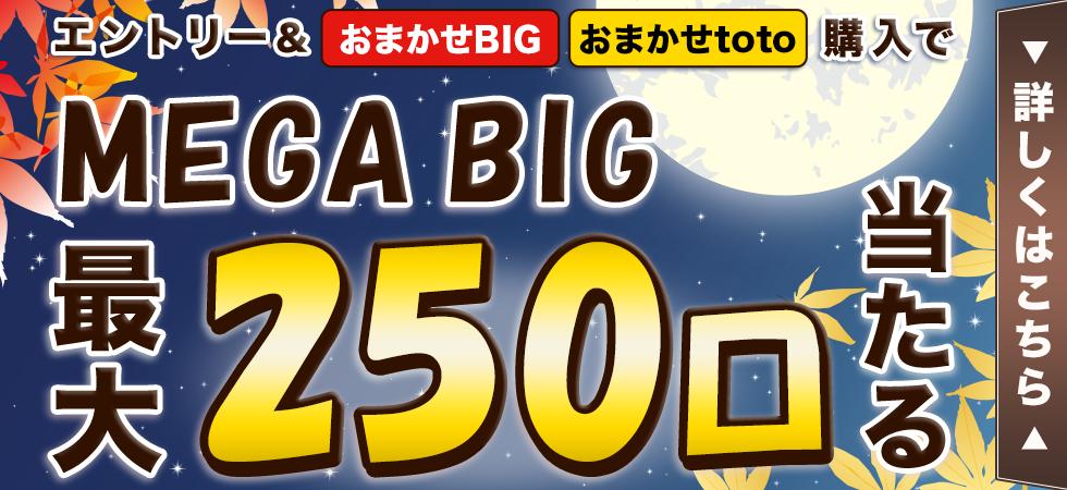 【楽天toto】エントリー&「おまかせBIG」「おまかせtoto」購入でMEGA BIG最大250口当たる!